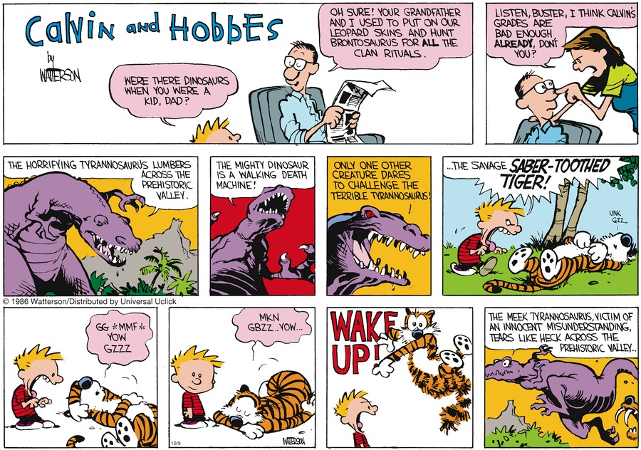 Calvin and Hobbes Comic Strip for October 09, 2016
