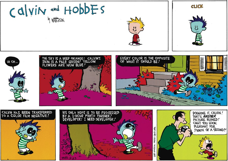 Calvin: Uh-oh. The sky is deep orange! Calvin's skin is a pale green! Yellow flowers are now blue! Every color is the oppsite of what it should be! Calvin has been transformed to a color film negative! His only hope is to be processed by a 1-hour photo finisher! Developer! I need developer! Dad: Doggone it, Calvin! That's another picture ruined! Can't you look pleasent for 1/500th of a second.