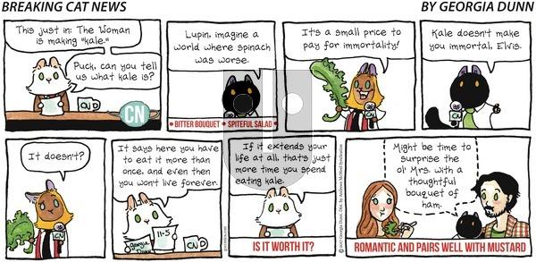 Breaking Cat News on Sunday November 5, 2017 Comic Strip