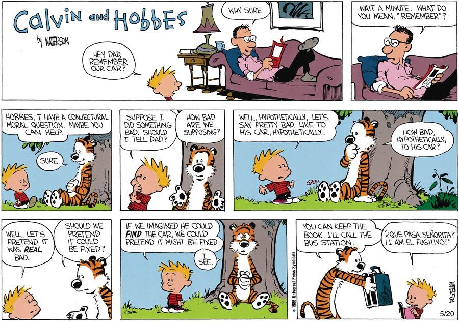 Calvin and Hobbes for Jul 7, 1991 Comic Strip