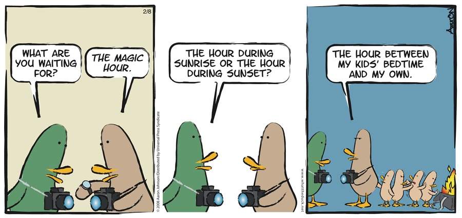 W.T. Duck for Nov 25, 2012 Comic Strip