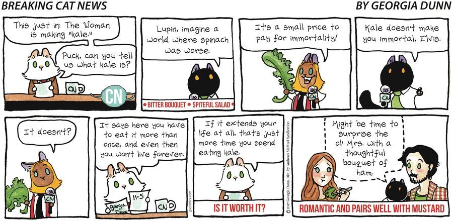 Breaking Cat News Comic Strip for November 05, 2017
