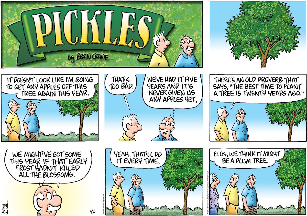 Pickles Comic Strip for June 10, 2012