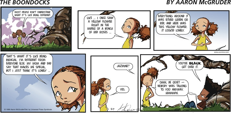 The Boondocks Comic Strip for May 07, 2006