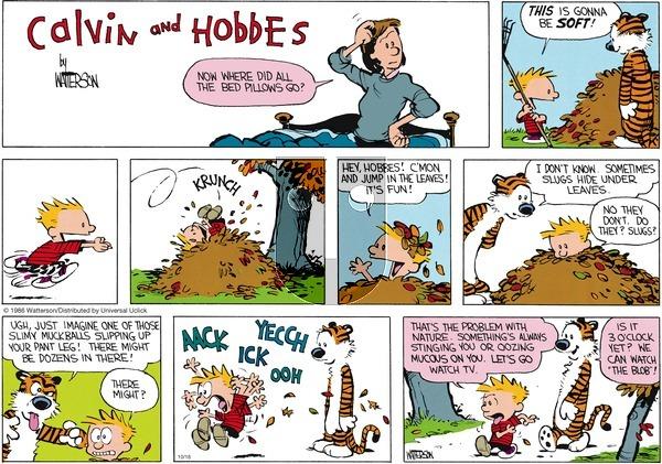 Calvin and Hobbes - Sunday October 16, 2016 Comic Strip