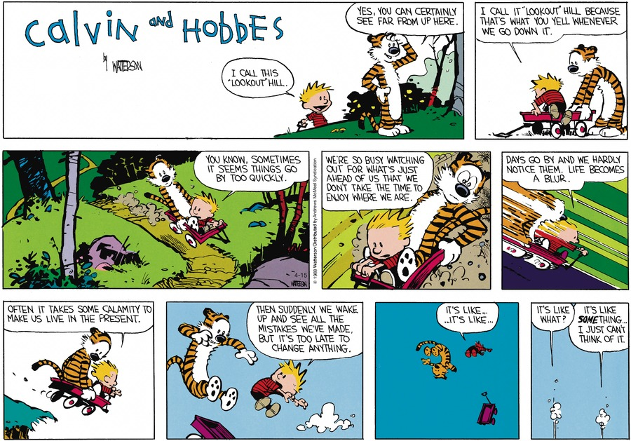 Calvin and Hobbes Comic Strip for April 15, 2018