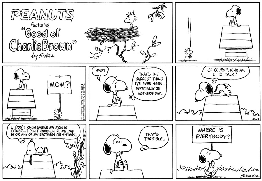 Peanuts Comic Strip for May 13, 1973
