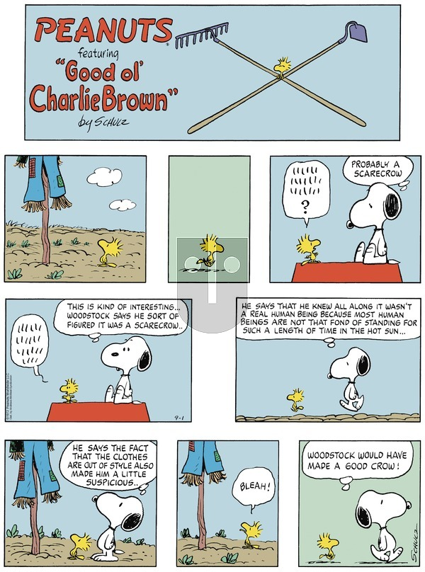 Peanuts on Sunday September 1, 2019 Comic Strip