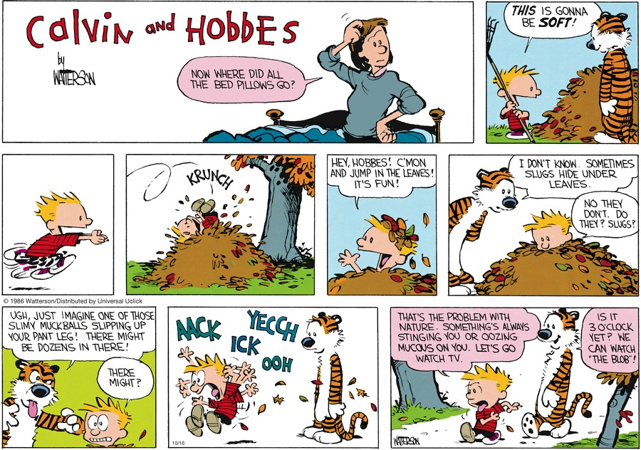 Calvin and Hobbes Comic Strip for October 16, 2016