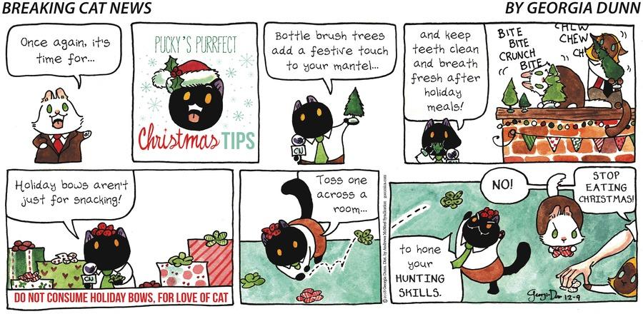 Breaking Cat News Comic Strip for December 09, 2018