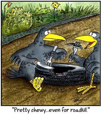 Birdbrains Comic Strip for September 26, 2021
