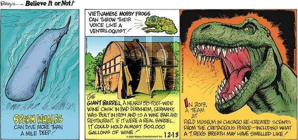 Ripley's Believe It or Not on Sunday December 13, 2020 Comic Strip