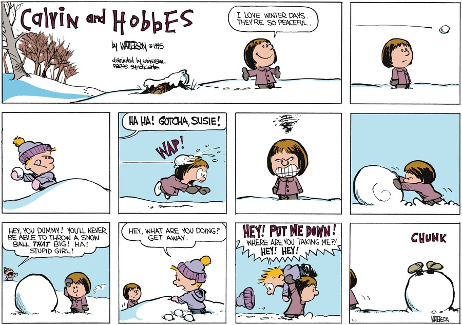 Calvin and Hobbes Comic Strip for January 03, 2016