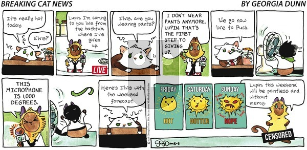 Breaking Cat News on Sunday August 5, 2018 Comic Strip