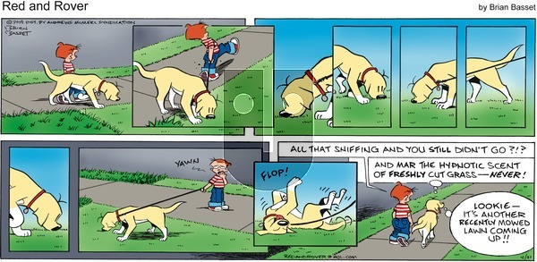 Red and Rover on Sunday April 21, 2019 Comic Strip