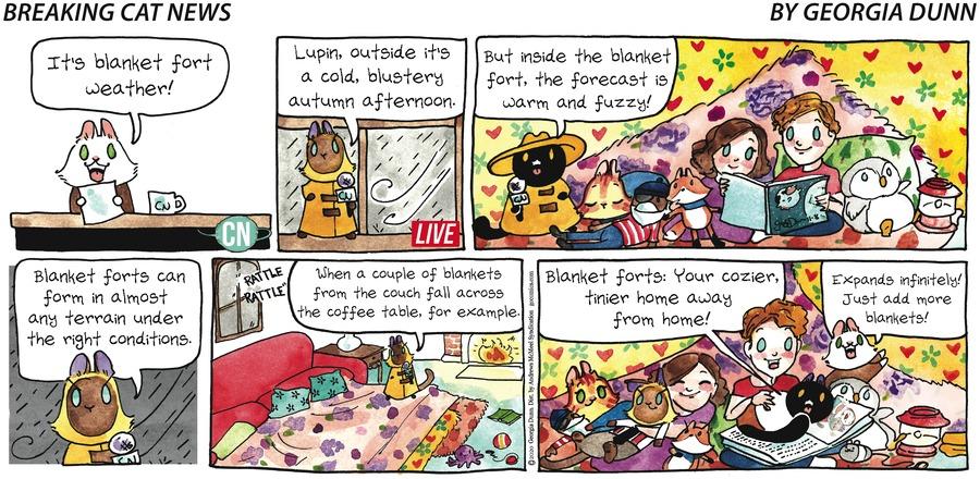 Breaking Cat News Comic Strip for November 08, 2020