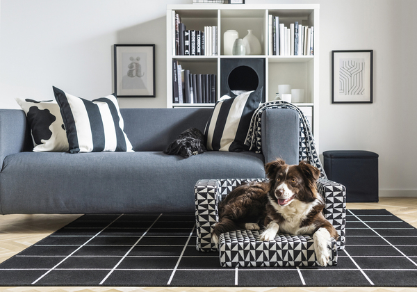 Pet owners and homeowners can stylishly coexist with this Ikea Lurvig dog/cat bed ($49.99), featuring a bottom seat cushion, which folds out for larger animals. The cover is stylish, durable and easy to clean, since it's removable and machine-washable.