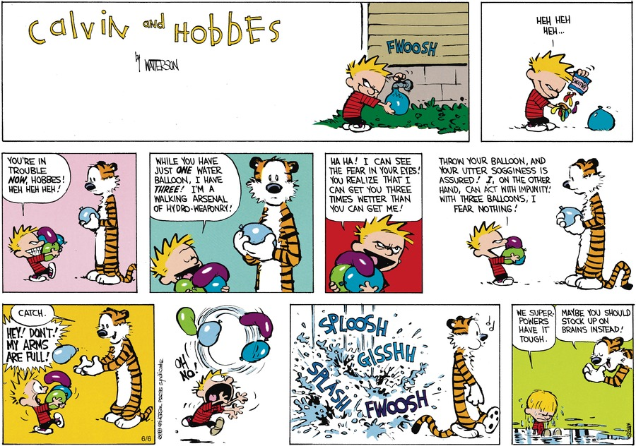 Calvin and Hobbes Comic Strip for July 16, 1989