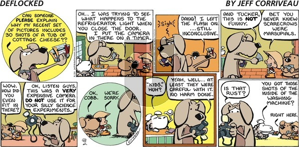 DeFlocked on Sunday May 24, 2009 Comic Strip