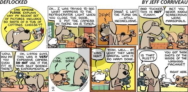 DeFlocked on Sunday May 24, 2009 Comic Strip