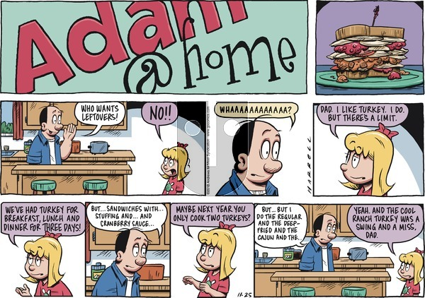 Adam@Home on Sunday November 25, 2018 Comic Strip