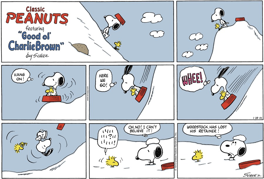 Snoopy & Woodstock start off at the top of a hill on a sled Snoopy: (Hang on!) (Here we go!) They start sliding down the hill and bump on something that makes them flip Woodstock: *looking around franticly* Snoopy: Oh, no! I can't believe it! Woodstock has lost his retainer!