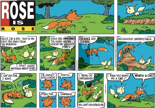 Rose is Rose on Sunday September 6, 2020 Comic Strip