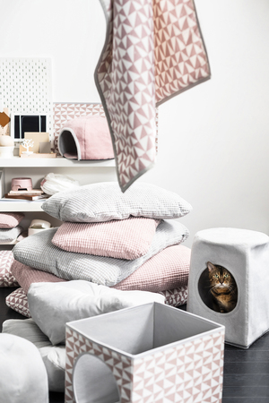 """Manufacturers that reflect a minimal, modern approach in terms of style and patterns are popular for pet items. Ikea's ingenious """"cat house"""" easily slips over a simple stool; the owner can use it as a seat and the animal can hide inside a cozy environment."""
