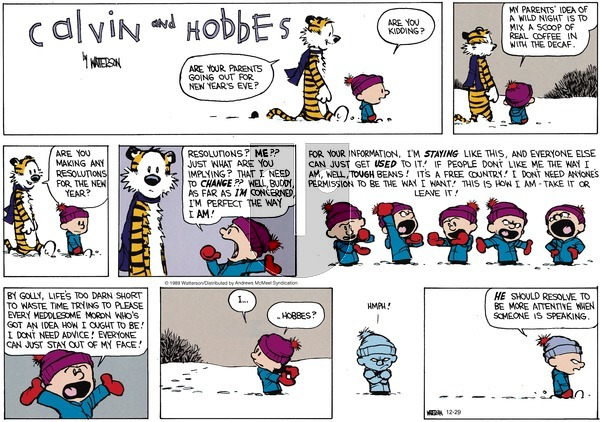 Calvin and Hobbes - Sunday December 29, 2019 Comic Strip