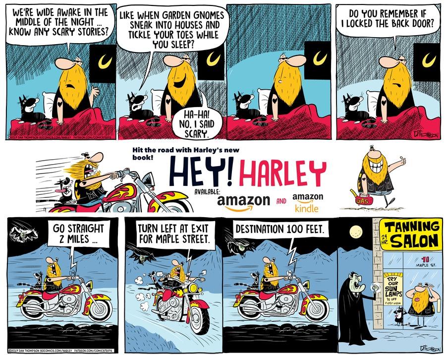 Harley by Dan Thompson on Sun, 24 Oct 2021