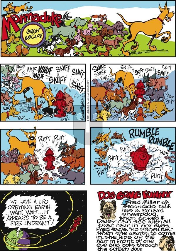 Marmaduke on Sunday September 1, 2013 Comic Strip
