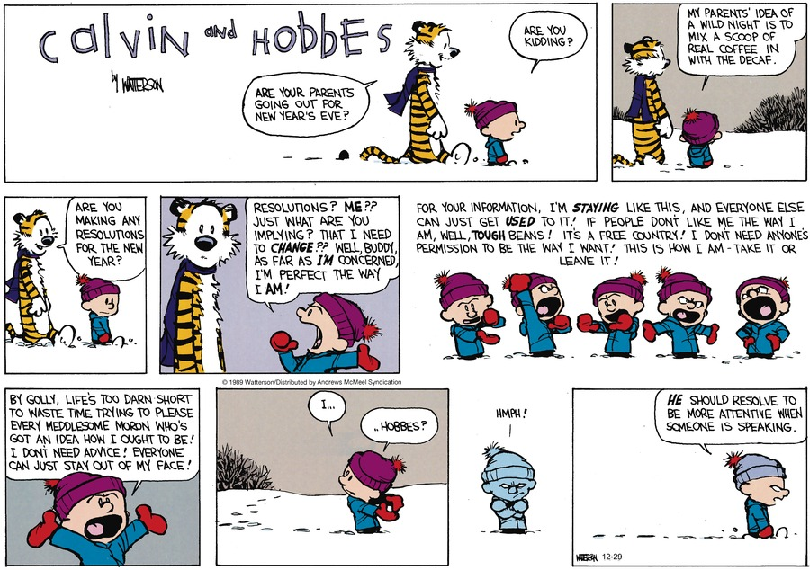 Calvin and Hobbes Comic Strip for December 29, 2019