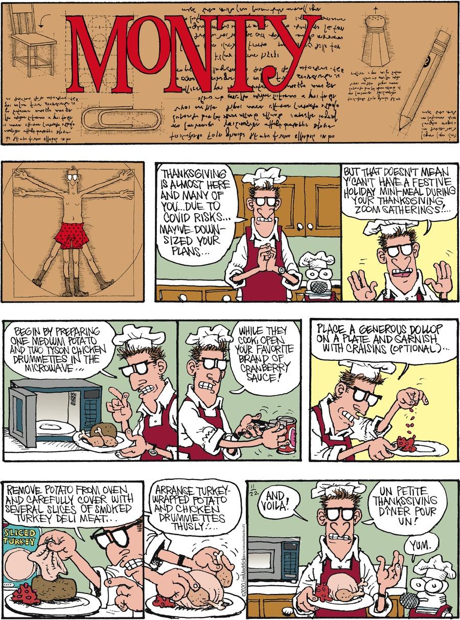 Monty Comic Strip for November 22, 2020