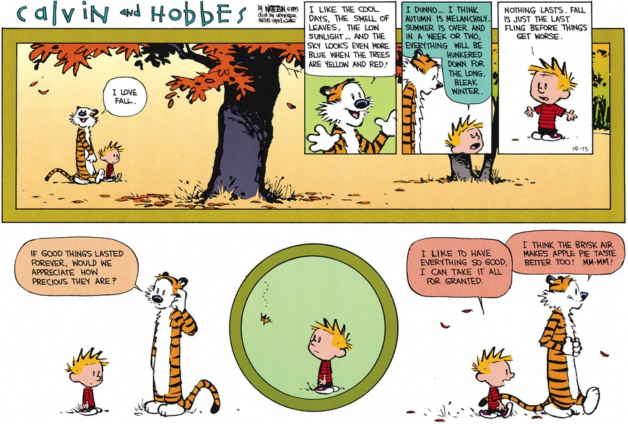 Hobbes: I love fall. I like the cool days, the smell of leaves, the low sunlight...and the sky looks even more blue when the trees are yellow and red! Calvin: I dunno...I think autumn is melancholy. Summer if over an ina week or two, everything will be hankered down for the long bleak winter. Nothing lasts, fall is just the last fling before things get worse. Hobbes: If good things lasted forever, would we appreciate how precious they are? Calvin: I like to have everything so good. I can take it all for granted. Hobbes: I think the brisk air makes apple pie taste better too! Mm-mm!