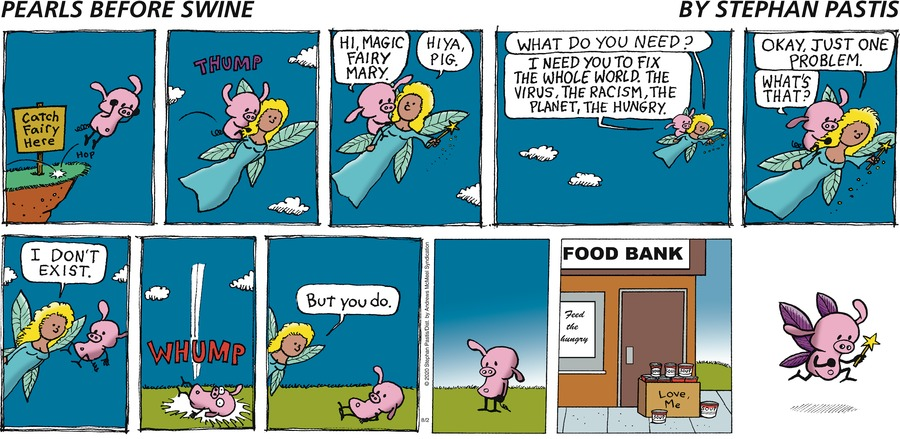 Pearls Before Swine Comic Strip for August 02, 2020