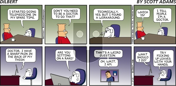 Dilbert on Sunday November 29, 2020 Comic Strip