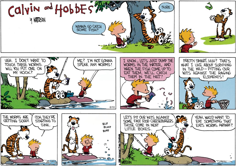 Calvin and Hobbes Comic Strip for July 28, 1991