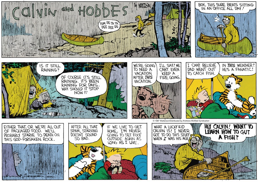 Calvin and Hobbes Comic Strip for August 13, 2017