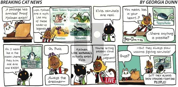 Breaking Cat News on Sunday November 26, 2017 Comic Strip