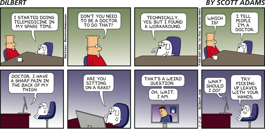 Dogbert Does Telemedicine - Dilbert by Scott Adams