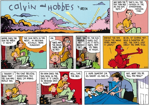 Calvin and Hobbes - Sunday July 30, 1989 Comic Strip