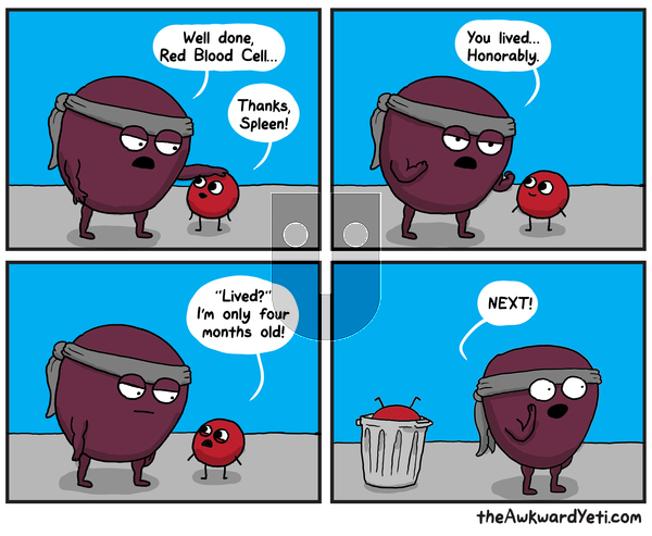 The Awkward Yeti - Monday October 21, 2019 Comic Strip