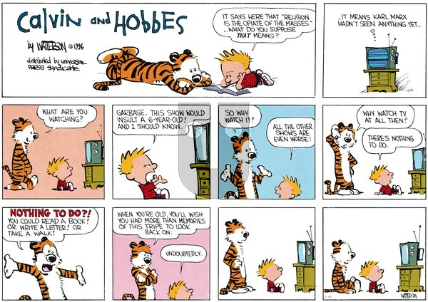 Calvin and Hobbes - Sunday January 17, 2016 Comic Strip