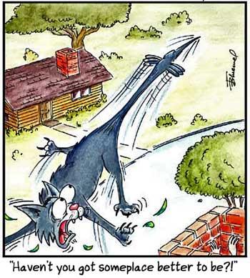 Birdbrains Comic Strip for September 26, 2020