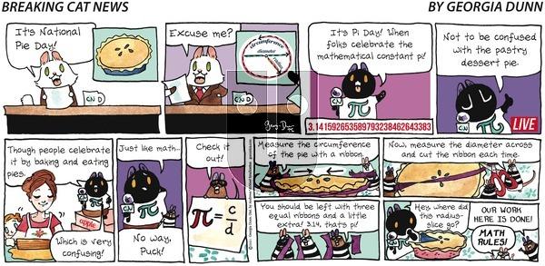 Breaking Cat News - Sunday March 14, 2021 Comic Strip