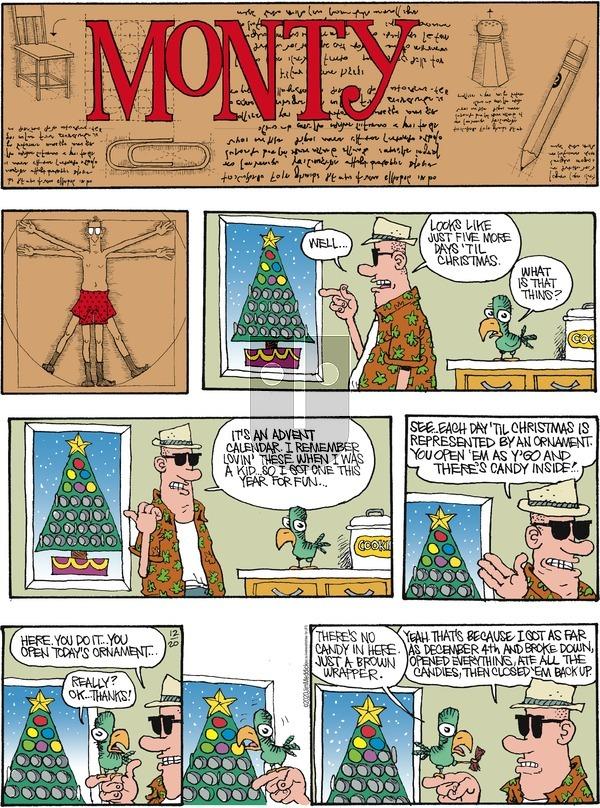 Monty on Sunday December 20, 2020 Comic Strip