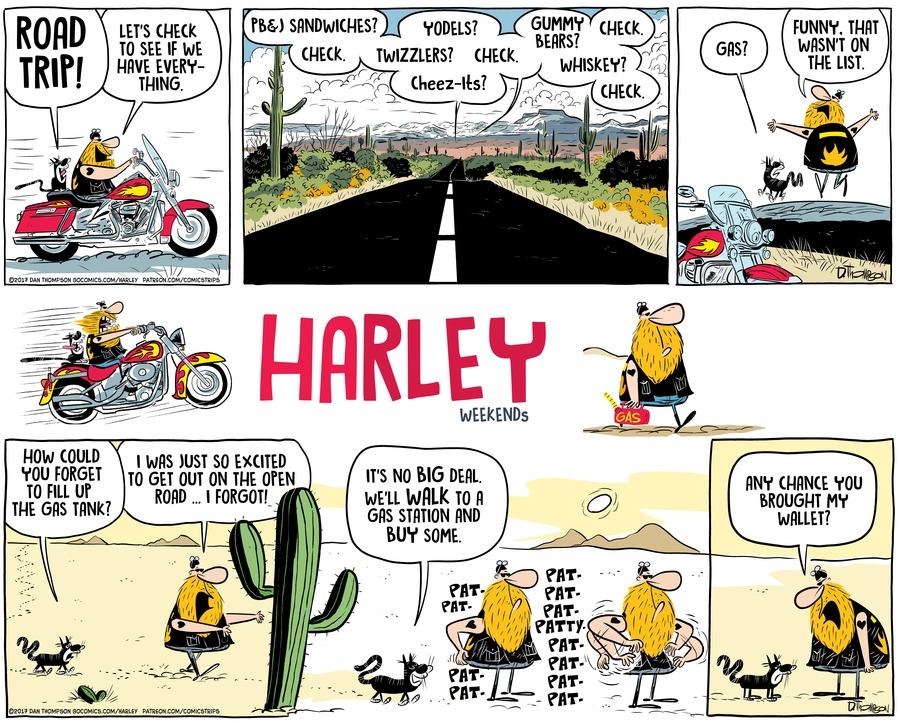Harley by Dan Thompson on Sun, 17 Oct 2021