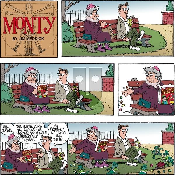Monty on Sunday November 26, 2017 Comic Strip