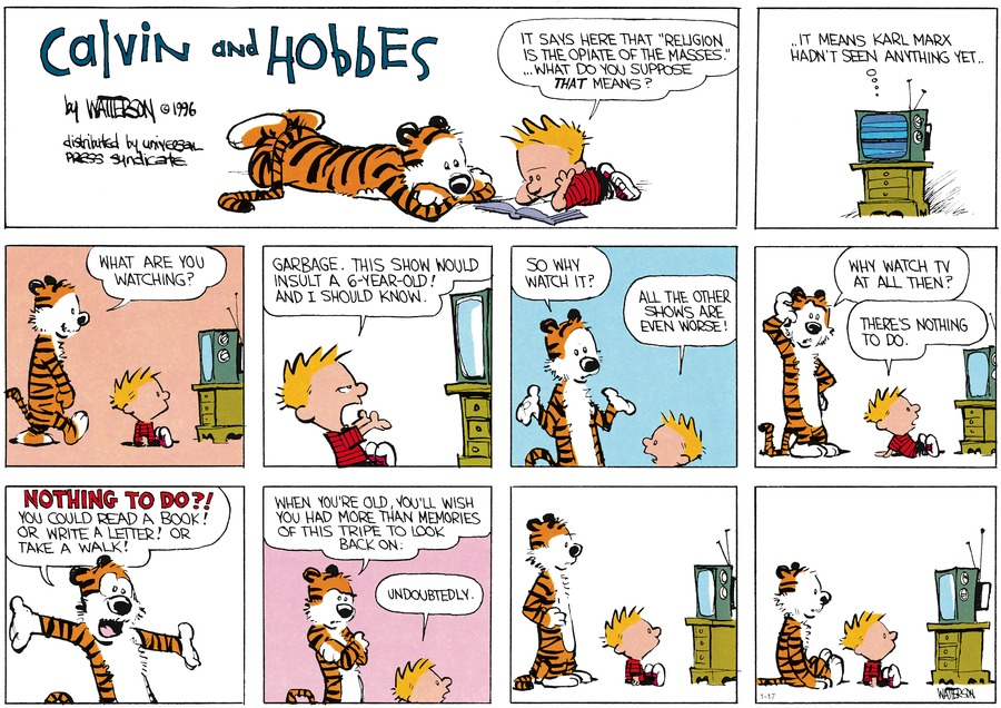 Calvin and Hobbes Comic Strip for January 17, 2016