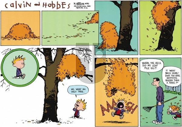 Calvin and Hobbes - Sunday October 22, 1995 Comic Strip